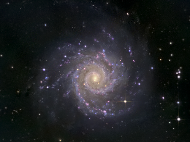 A view of M74